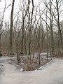 Isle of Skinny Trees (2155186686).jpg