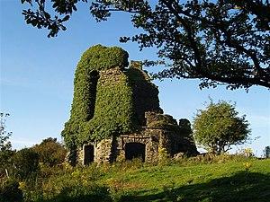 Tonna, Neath - Ivy Tower