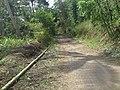 JLN CIDERES - panoramio.jpg