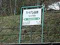 JRE Pureipia-ShirahamaStation Running-in-board.jpg