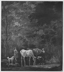 A shepherdess with her cows and a goat in a crossing in a brook