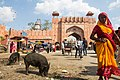 Jaipur-2015-03-17-2.jpg