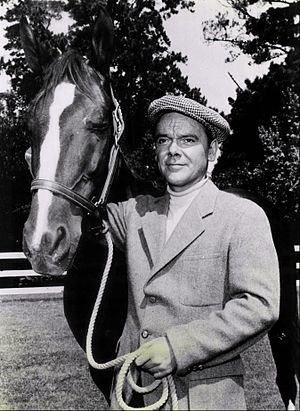 National Velvet (TV series) - James McCallion as the ex-jockey Mi Taylor with the horse King (1960)
