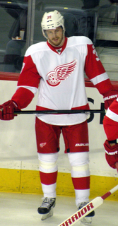 Jan Muršak Slovenian ice hockey player