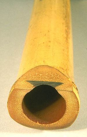 Shakuhachi - A shakuhachi showing its Kinko school utaguchi (歌口, blowing edge) and inlay
