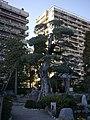 Jardin Japonais - Monaco - P1560529.jpg