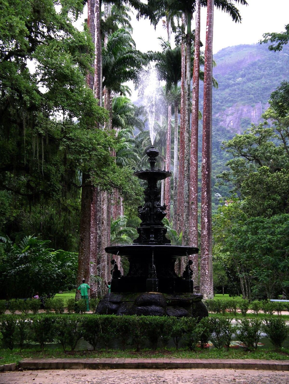Jardin botanique de rio de janeiro wikip dia for Rabais jardin botanique 2016