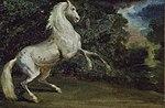 Jean Louis André Théodore Géricault - Prancing Horse - 1944.687 - Art Institute of Chicago.jpg