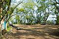 Jinmusan Park in Toyooka Hyogo.jpg