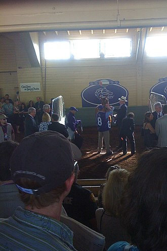 John Gosden - John Gosden saddling Raven's Pass before the Breeders' Cup Classic