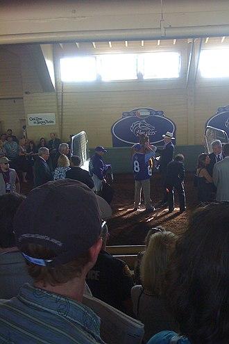 John Gosden - John Gosden saddling Raven's Pass before the Breeders' Cup Classic