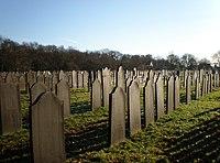 Joodse Begraafplaats Muiderberg Graeber4.JPG