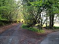 Junction near Waddon Brakes - geograph.org.uk - 166464.jpg