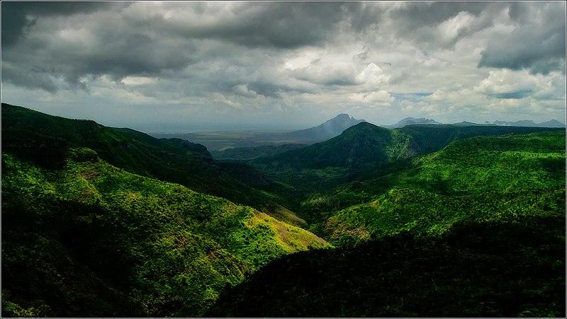 A World Unknown 800px-Jungle_landscape_by_Over_Doz
