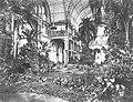 Köln - Flora Palmenhaus Innenansicht um 1880 RBA.jpg