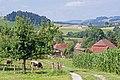 KRIEGER HUTWILL - panoramio.jpg