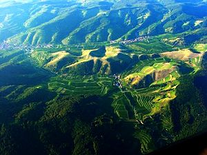 Vogtsburg - Aerial view of the central Kaiserstuhl