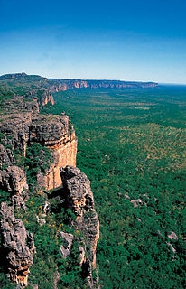 Kakadu National Park Protected area in the Northern Territory, Australia