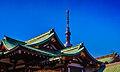 Kameido Tenjin Shrine and Tokyo sky tree.jpg