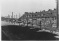 Kamp Duindorp, 1945-1946, Zeezwaluwstraat, Den Haag.png