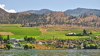 Okanagan Valley (wine region) - Okanagan Lake helps moderate the climate in the Okanagan region which receives very little rainfall throughout the year.