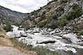 Kern River1.JPG