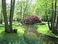 Keukenhof Garden (41).JPG