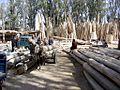 Khotan-mercado-d61.jpg