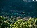 Kirstenbosch National Botanical Garden, Cape Town (P1060039).jpg