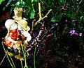 Kissing in the Garden (2480807802).jpg