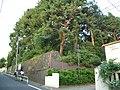 Kitsunezuka Tumulus (狐塚古墳) - panoramio.jpg