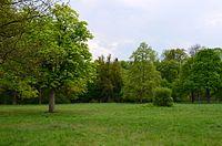 Kliczków - park DSC 0075.JPG