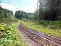 Krasnokamskiy r-n, Permskiy kray, Russia - panoramio (144).jpg