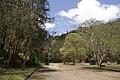 Ku-Ring-Gai Chase NSW 2084, Australia - panoramio (43).jpg