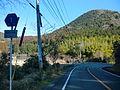 Kumamoto pref road 1-6.JPG