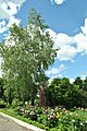 Kypiachka-pam-Studynskomu-14068435.jpg