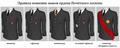 Légiond'HonneurGrades (ru-text).png