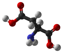 Kết quả hình ảnh cho Aspartic Acid