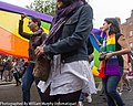 LGBTQ Pride Festival 2013 On The Streets Of Dublin - Were You One Of The 30,000 Who Took Part (9169006941).jpg