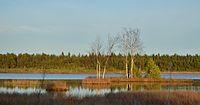 Laanemaa järv.JPG