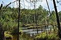 Lac du Bousquet2.jpg