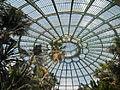 Laika ac Royal Greenhouses of Laeken (6317147760).jpg