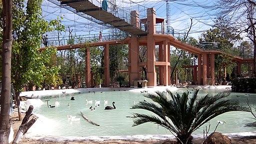Lake View Park - Birds Aviary
