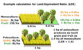 Land Equivalent Ratio of polyculture vs monoculture.png