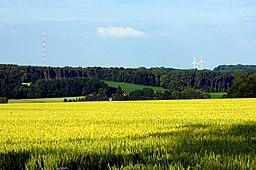 Landschaft am Westerberg