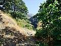 Landschaft in der Sierra Nevada19.jpg