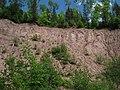 Landslide - panoramio.jpg