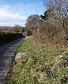 Lane to Lettaford - geograph.org.uk - 715923.jpg