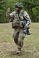 Latvian Army soldier (17068047410).jpg