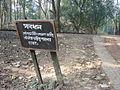 Lawachara National Park Srimongol Sylhet Bangladesh 9.JPG